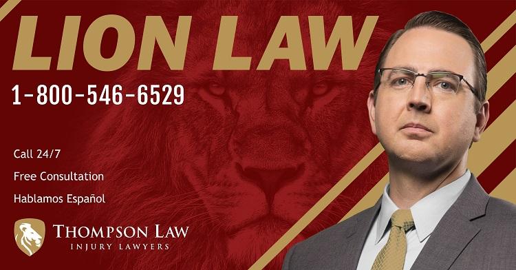 Lion Law Image 3