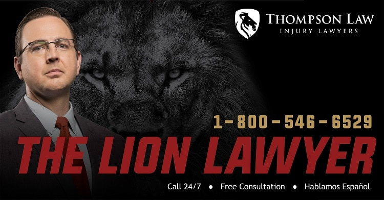 The Lion Lawyer Image 1