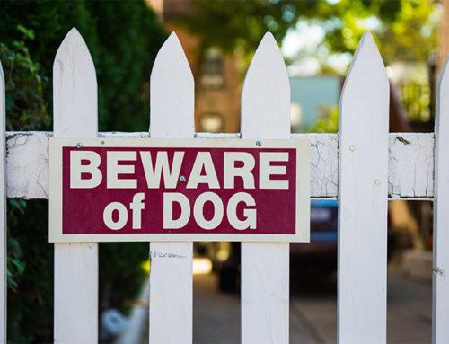 If My Dog Bites Someone Who Trespasses am I Liable?